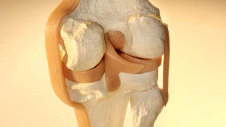Como prevenir problemas nas articulações e cartilagens